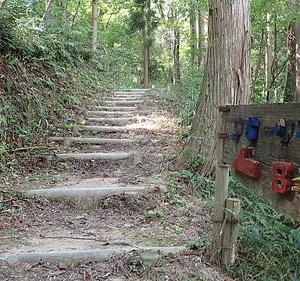 ゆっくり歩いて荒神山681