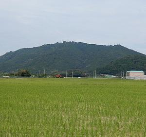 午前の宇曽川散歩