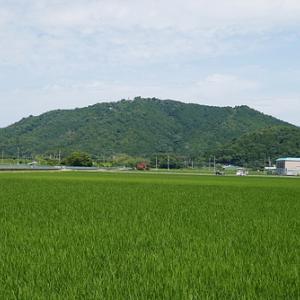 散歩も暑い宇曽川散歩