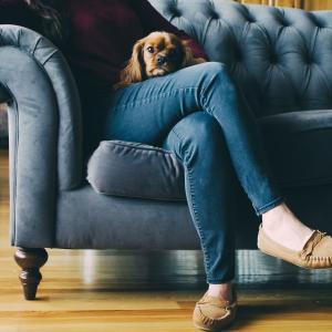 やっと見つけたソファ