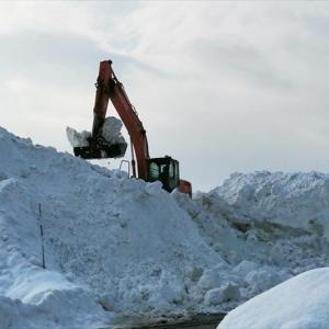 雪に埋もれたけど、また頑張ります。(2月6日)