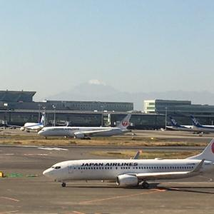 JALマイレージ特典航空券でGoTo京都《2020.11》