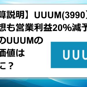UUUM 今期予想も営業利益20%減予想!存在価値はどこに?