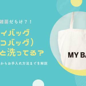 実は雑菌だらけ?!マイバッグ(エコバッグ)ちゃんと洗ってる?レジ袋の有料化からお手入れ方法までを解説