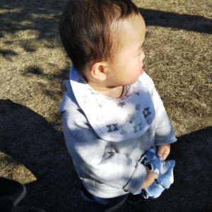 1歳4ヶ月のお気に入り