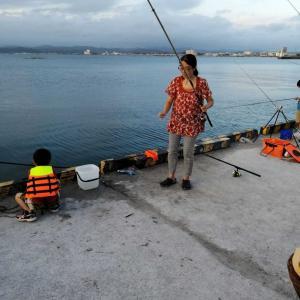館山港・堤防釣り、近況釣果報告 (5月22日)