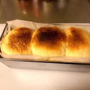 2回目のパン作りは、まぁまあな感じだった。