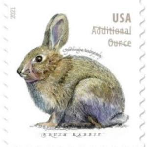 2021年発売予定のアメリカ切手& Pictorial Postmarks