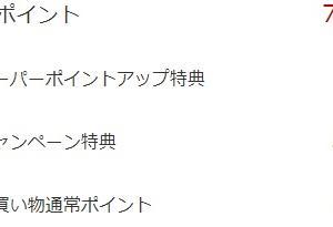 【セキララ】楽天の買い物マラソン中の購入品と獲得ポイント公開【2020年7月】