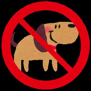 ペット禁止のマンションでギリギリ買えそうな動物wwwww