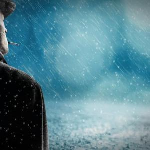 【悲報】独身のやつってずっと一人で寂しくないの?→結果・・・・・・・・・・・・・・・・・・・・・・