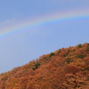 虹と紅葉の長老湖 [七ヶ宿町・紅葉ドライブ #16(完)]