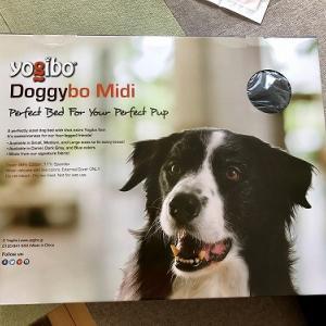 Doggybo Midi