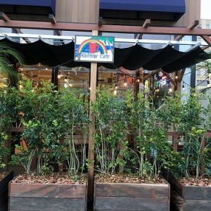 GW Rainbow cafe
