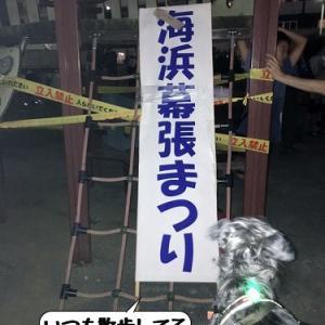 幕張ビーチ花火フェスティバル2019