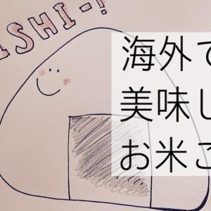 海外で土鍋で圧力鍋でご飯を炊く方法/日本製の炊飯器は買えるの?