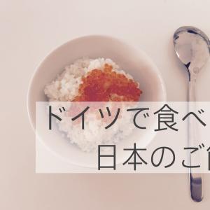 ドイツで日本のお米は食べられる?お米の選び方と炊き方についてご紹介
