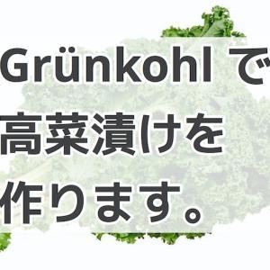 ドイツで高菜漬けを作る!Grünkohl の食べ方をご紹介!