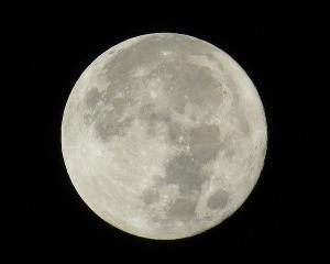 """""""月と月見""""秋の絵本①子供といっしょに月を愛でよう。お月様とお月見のおすすめ絵本と図鑑"""