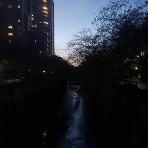 早稲田駅 豊川浴泉と金城庵②