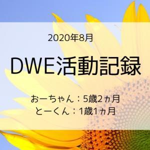 【2020年8月】DWE活動(5ヵ月目)