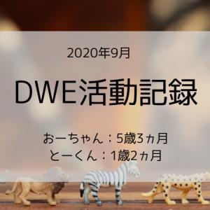 【2020年9月】DWE活動(5ヵ月目)