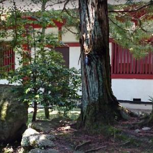 大阪府:興法寺