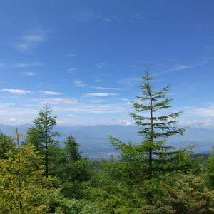 高山植物の宝庫 高峰山(標高2106m)トレッキング初級コース