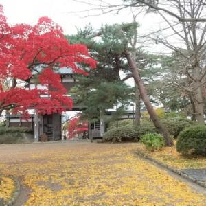 秋田市内観光(千秋公園の紅葉と赤れんが館 他)