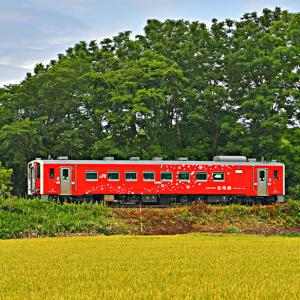 JR北海道・釧網線で見かけるいろんな列車その4 花咲線号登場!