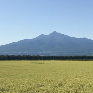 今日の斜里岳 2020年7月18日 今日は朝から快晴