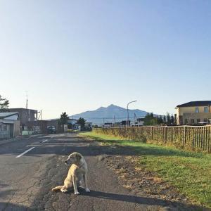 今日の斜里岳 2020年9月29日 朝の気温がだんだん氷点下に近づく