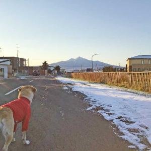 今日の斜里岳 2020年11月12日 「今朝の最低気温は氷点下6度 凍てつく知床の街・斜里」
