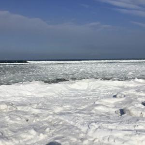 知床(斜里町)に流氷が来た 2021年流氷シーズンの始まり