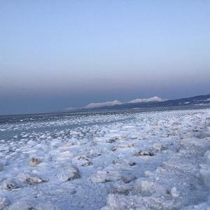 無数の氷が浮かぶ流氷の海 知床・斜里町 2021年1月24日