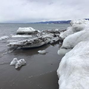 超大型の低気圧の通過で流氷はどうなった? 知床2021年2月16日