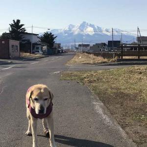 今日の斜里岳 朝は−3度、昼は+20度の気温 知床も、もう春かな 2021年4月12日