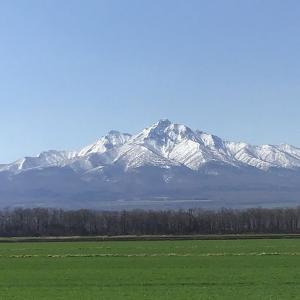 今日の斜里岳 連休中は雪が降った 2021年5月6日