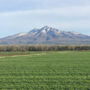 今日の斜里岳(最終回) 山の雪はどんどん溶ける  2021年5月18日