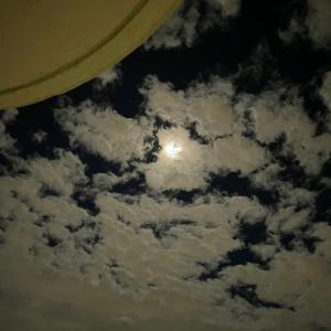 お月さま、見えました?