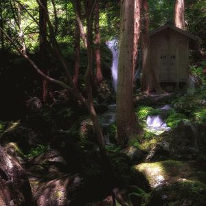 【胴腹滝】鳥海山の伏流水が湧き出る山形の隠れた名所!その魅力とは