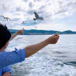 かもめと海