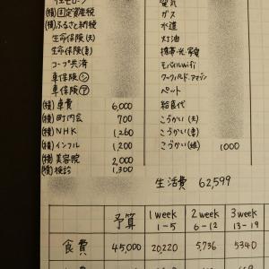 <手書き家計簿>毎月積み立てている項目について「車費」「インフル」「美容院」「検診」など