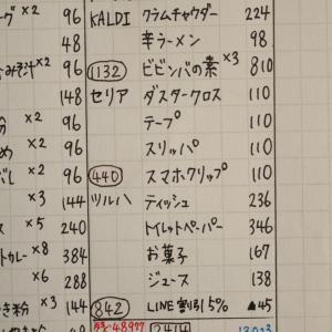 <手書き家計簿>1月9日の出費内容☆KALDI・セリア☆お小遣いで文房具を買いました♡