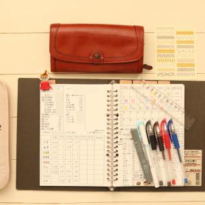 <手書き家計簿>1月3週目締めました☆生活費残28996円!娘の誕生日費用は別会計で処理しました