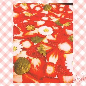【かわいい生地】大好きな苺でいっぱい♡何作ろっかな♪