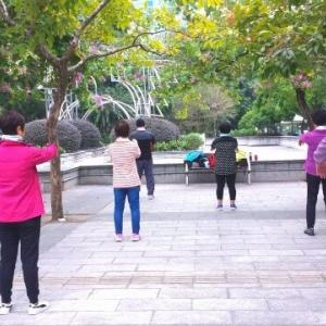 ウィズコロナ時代、NHK Eテレ「テレビ体操」がシニアの体力維持にお勧め!