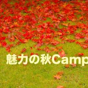 秋のキャンプがオススメな理由!!