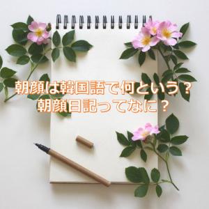 【韓国語と日本語併記】朝顔日記 의 뜻 / 朝顔日記の意味