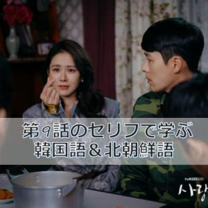 「愛の不時着」第9話のセリフで学ぶ韓国語&北朝鮮語(動画付き)